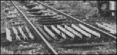 Cattle grids